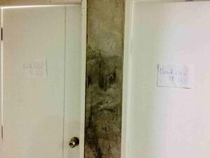 モンキーナップ トイレ