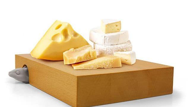 チーズとネズミ