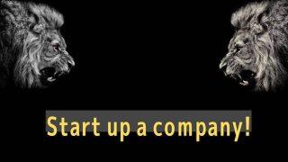 start up a company!